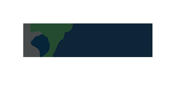 Alpine Motor Group